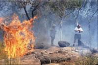 Biomass burning, Field campaign in Australia